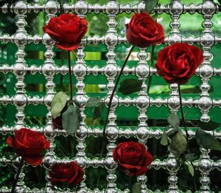 گل آرایی ضریح مطهر حضرت عبدالعظیم حسنی(ع) / عکس: محمود رحیمی
